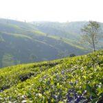 Srí Lanka, ostrov snů